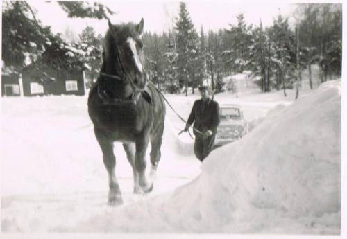 Vilhelm Sjöö 1966. Vintern var lång det året och snön låg från november 1965 till maj.